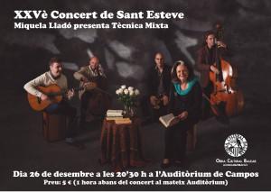 concert sant esteve 2015-01