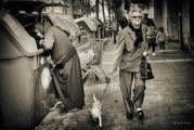 Jaume Adrover guanya la Marató fotogràfica de Palma