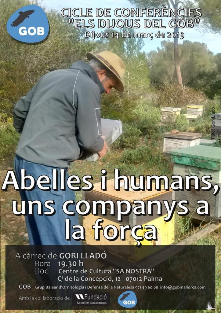 Conferència de Gori Lladó sobre les abelles