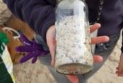 Neteja de plàstic a es Trenc